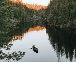 Новое исследование: коронавирус может жить в реках и озерах до 25 дней
