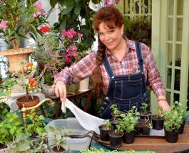 Как обеспечить полив комнатных растений во время отпуска: советы цветоводам