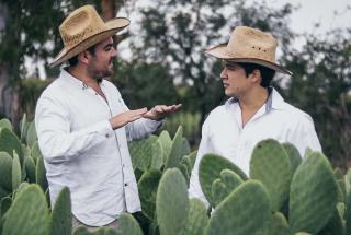 Веганская кожа из листьев кактуса: бизнесмены из Мексики разработали органический материал