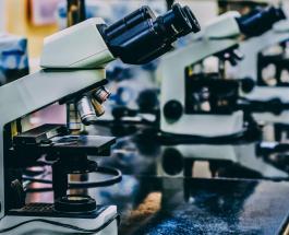 В Австралии началось тестирование потенциальной вакцины от COVID-19 на людях