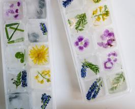 Как правильно размораживать продукты после длительного хранения в морозильной камере