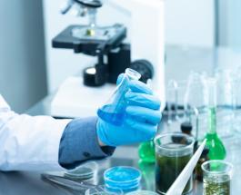 Несколько вакцин против COVID-19 достигли финальной стадии тестирования