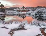 На Тасмании впервые за 50 лет выпал снег: жители острова не могли уснуть от радости и восторга