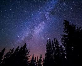 Звездопад Персеиды 2020: астрологические советы на 12 августа для каждого знака Зодиака