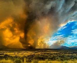 Огненный смерч запечатлели очевидцы во время лесного пожара в Калифорнии