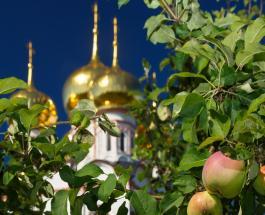 Яблочный Спас 2020: что нельзя и что можно делать в праздник 19 августа