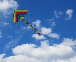 Удивительный случай напугавший публику: 3-летнюю девочку поднял над землей воздушный змей