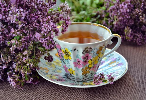травяной чай в чашке с блюдцем, веточка растения