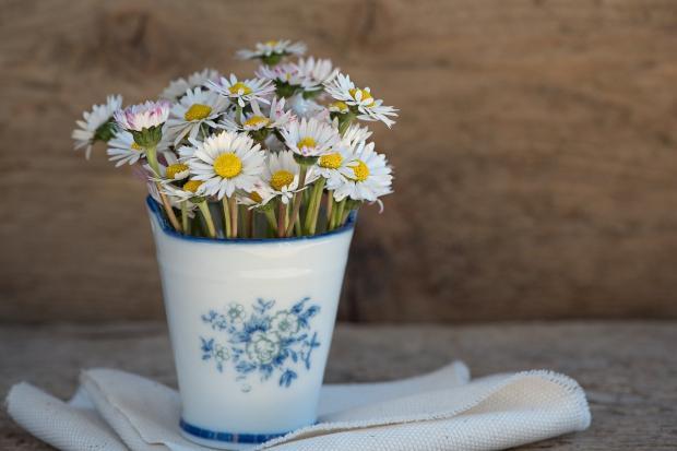 красивые ромашки в вазе