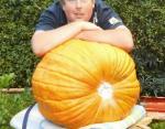 Вес тыквы - 36,4 килограмма
