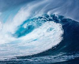Новый рекорд Гиннесса: женщина-серфер покорила 22-метровую волну – видео
