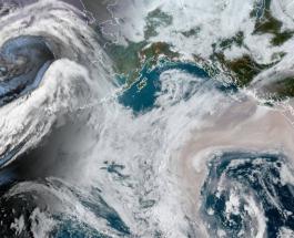 Пожары в США видны из космоса: фото и видео покрытого густым дымом западного побережья