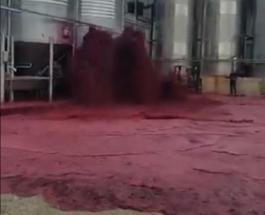50 000 литров вина вылилось на улицу в Испании: видео последствий аварии на винодельне