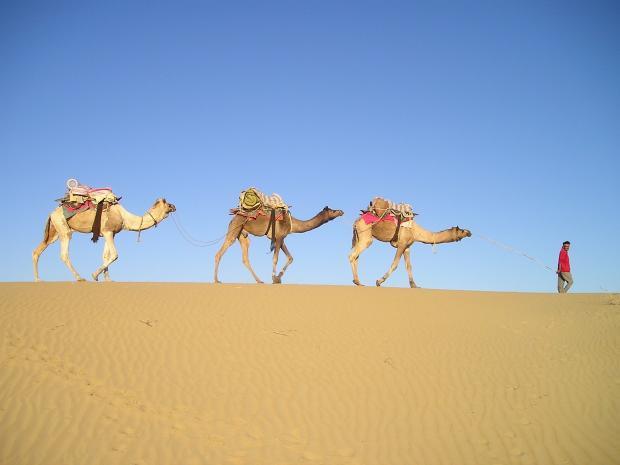 караван идет по пустыне