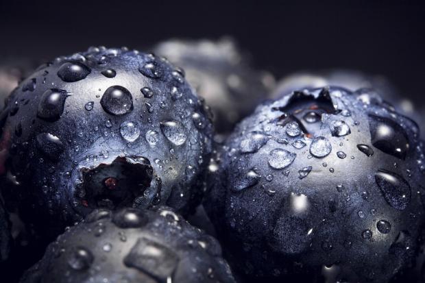ягоды черники с капельками воды крупным планом