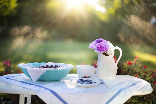 черника в тарелке и белый кувшин с цветами