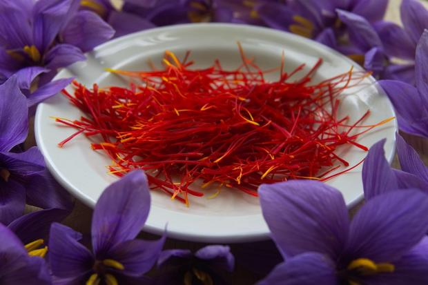 шафран на тарелке в окружении фиолетовых цветов