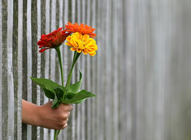 рука с цветами