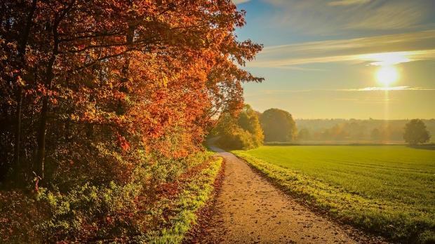 осенний пейзаж - дорога уходит в поле
