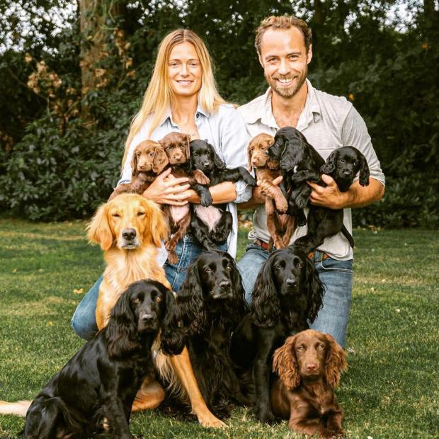 Брат Кейт Миддлтон с невестой и собаками