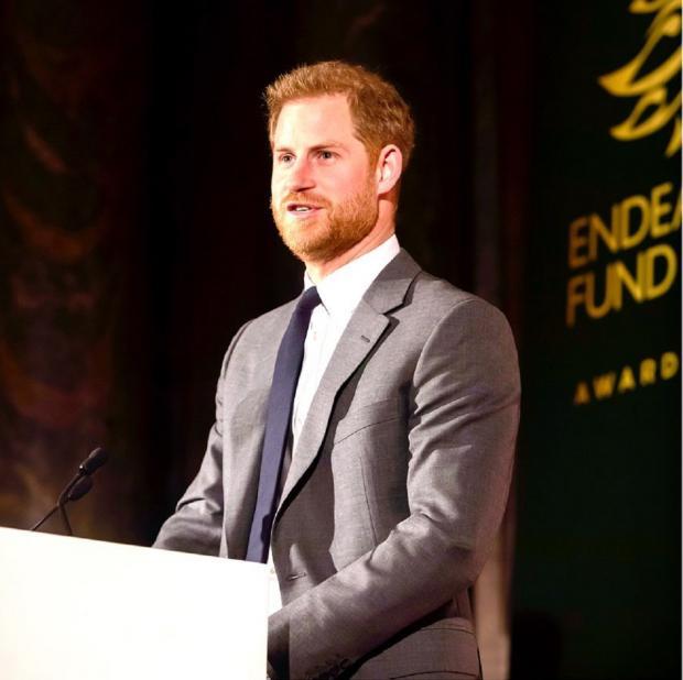 принц Гарри во время выступления