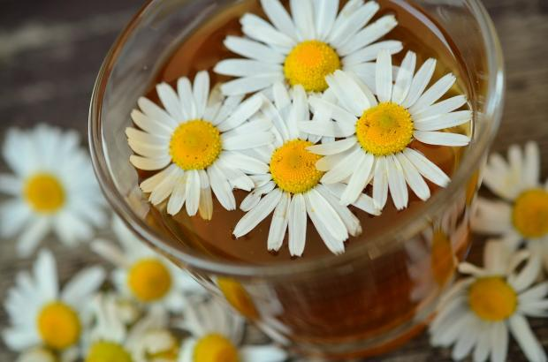 стакан с чаем, цветки ромашки