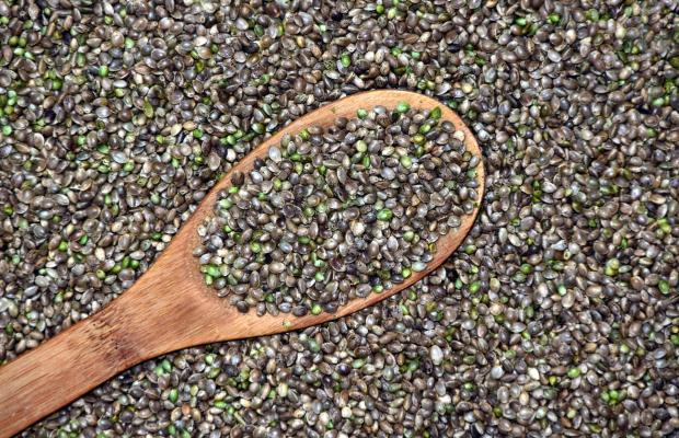 семена конопли и деревянная ложка