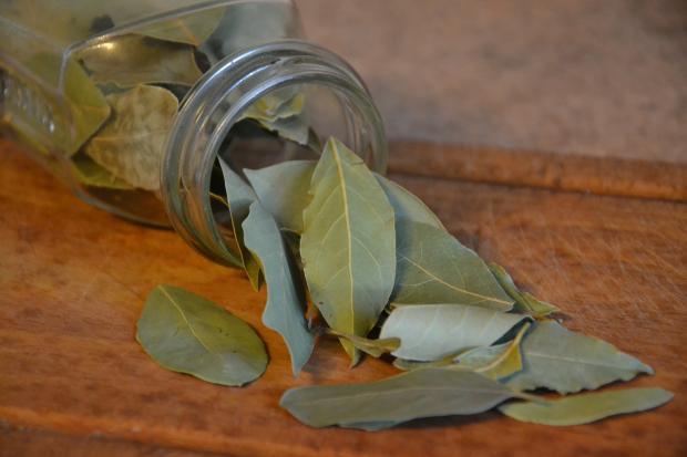 стеклянная банка с лавровыми листьями