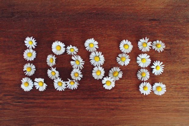 слово любовь из ромашек