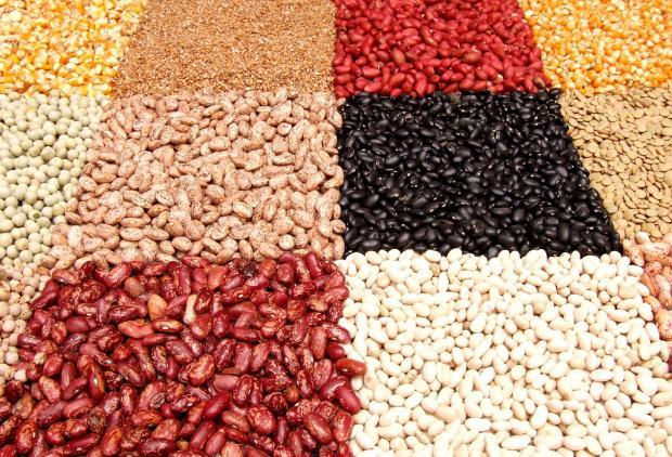 фасоль, чечевица, бобы и другие бобовые