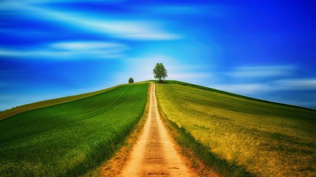 проселочная дорога, уходящая вверх среди зеленой травы