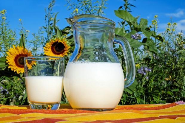молоко в кувшине и стакане стоит на столе на фоне ярких подсолнухов