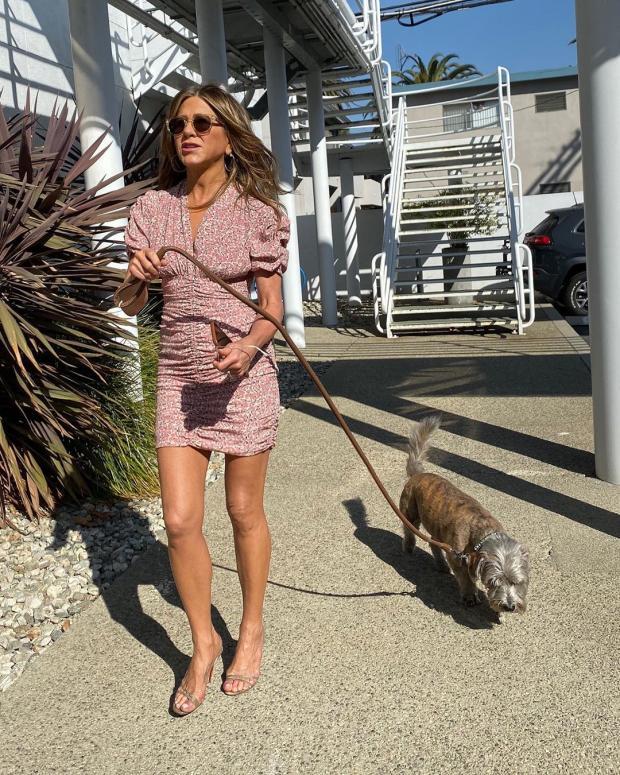 шоу-звезда Энистон на прогулке с собакой