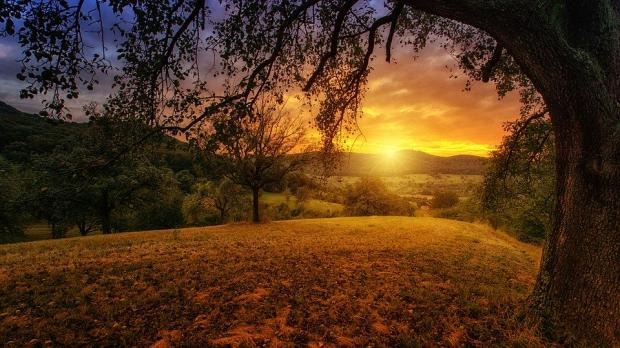 солнечный закат на фоне осенней природы