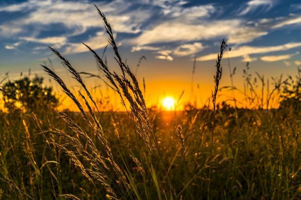 восход Солнца над осенним полем