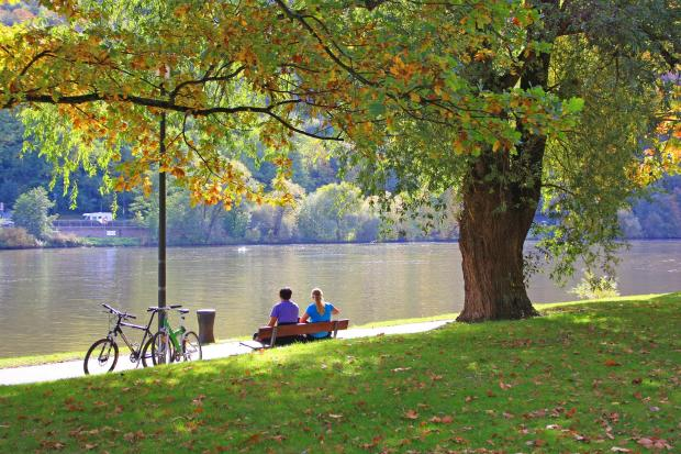 осенний парк, пара сидит на лавочке у реки