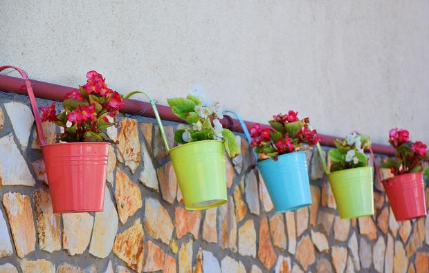развешанные на стене разноцветные цветочные горшки