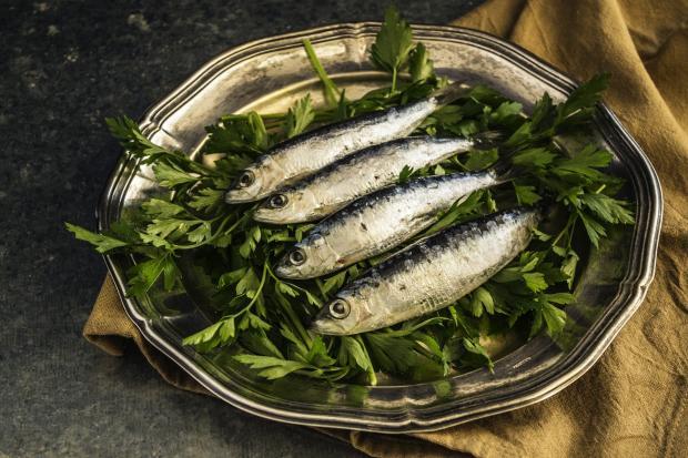 жареные сардины на тарелке с зеленью