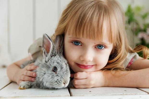 девочка лежит на полу обнимая серого кролика