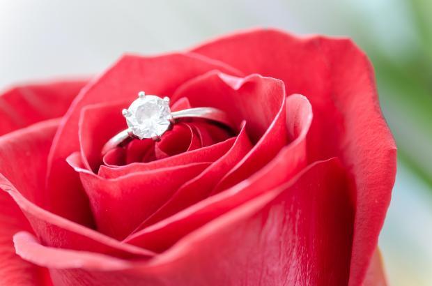 Обручальное кольцо в красной розе