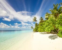 Знаки Зодиака которые смогут выжить на необитаемом острове