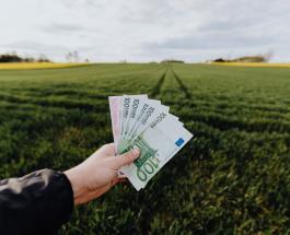Четверо нищих из Франции выиграли в лотерею: что мужчины планируют сделать с деньгами