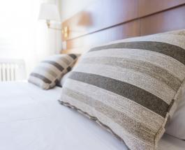 Признаки наличия в доме постельных клопов и методы избавления от вредителей
