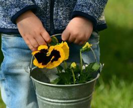 Доктор Комаровский назвал 5 вещей которые необходимо хранить вдали от детей
