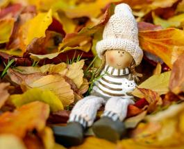 Удачные и неудачные дни ноября: в какие даты следует быть особенно осторожными
