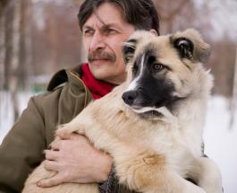 Собака или лицо человека: визуальный тест по картинке даст совет на будущее