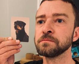 Забавные фото людей и животных: фотограф показал как домашние питомцы похожи на своих хозяев