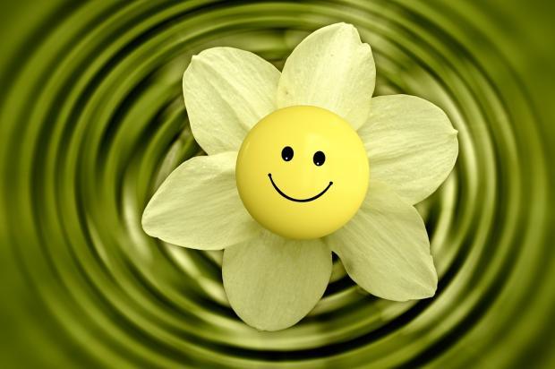цветок смайлик на фоне зеленых кругов