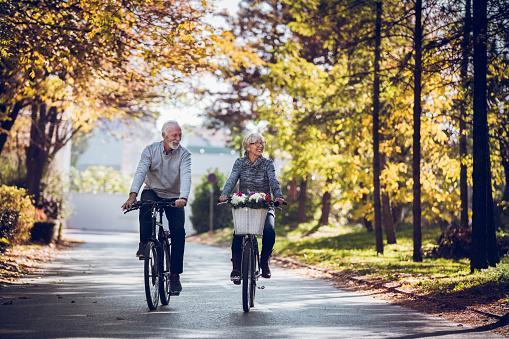пара едет на велосипедах по асфальту
