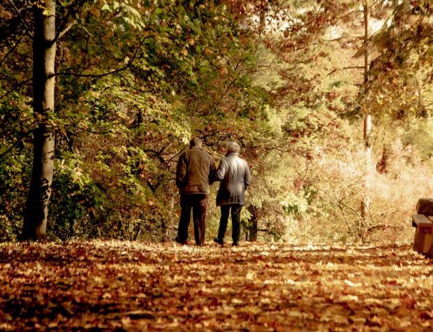 пожилая пара прогуливается по осеннему парку